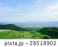 奈良 若草山 眺望の写真 28518902