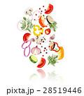 概念 野菜 スライスのイラスト 28519446