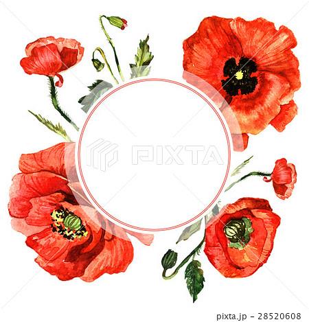 Wildflower poppy flower frame in a watercolor 28520608