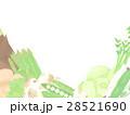春野菜 イラスト 背景 28521690