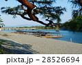嵐山 京都 渡月橋の写真 28526694