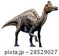 イラストレーション 恐竜 大型のイラスト 28529027