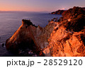 黄金崎 西伊豆 富士山の写真 28529120