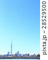 東京スカイツリー 東京 青空の写真 28529500