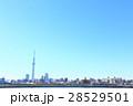 東京スカイツリー 東京 青空の写真 28529501