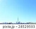 東京スカイツリー 東京 青空の写真 28529503