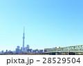 東京スカイツリー 東京 青空の写真 28529504