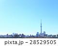 東京スカイツリー 東京 青空の写真 28529505