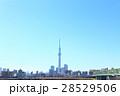 東京スカイツリー 東京 青空の写真 28529506