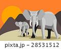 動物 ぞう ゾウのイラスト 28531512