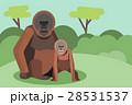 動物 森林 林 28531537