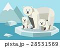 動物 くま クマのイラスト 28531569