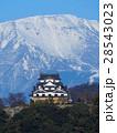 2月滋賀 彦根城・天守閣と伊吹山 28543023