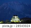 2月滋賀 彦根城・天守閣ライトアップと伊吹山 28543024