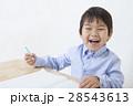 勉強する子供 28543613