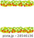 苺 果物 果実のイラスト 28546136