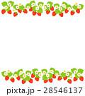 苺 果物 果実のイラスト 28546137