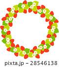 苺 果物 果実のイラスト 28546138