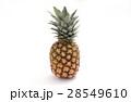 パイナップル 28549610