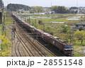 EH500形牽引のコンテナ貨物列車 28551548