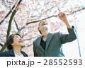 桜並木と老夫婦 28552593