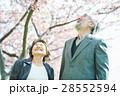 桜並木と老夫婦 28552594