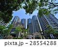 建築物 住宅 高樓大廈 28554288