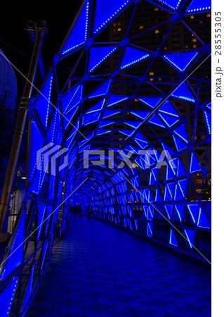 東京ドームシティ、光の大トンネル 28555305