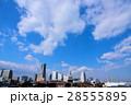 みなとみらい 横浜 都市風景の写真 28555895