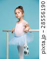 バレリーナ バレエ 女の子の写真 28556190