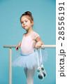 バレリーナ バレエ 女の子の写真 28556191
