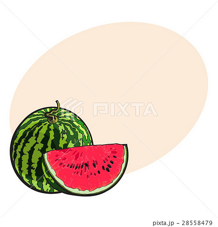 Whole watermelon and red slice with black seeds 28558479