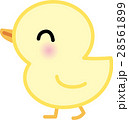 動物 ひよこ キャラクター向け 28561899