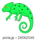 Chameleon icon, cartoon style 28562540