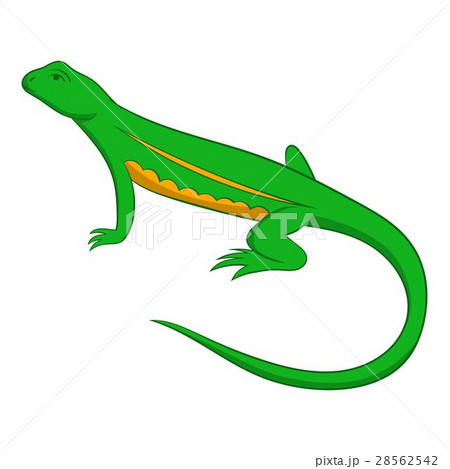 Salamander icon, cartoon style 28562542