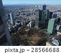 新宿中央公園付近 28566688