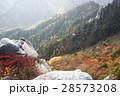御在所 ロープウェー 御在所岳の写真 28573208