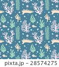 サンゴ礁 シームレス パターン 28574275