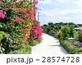 沖縄 竹富島 集落の写真 28574728