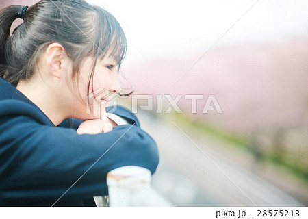 高校生と桜 28575213