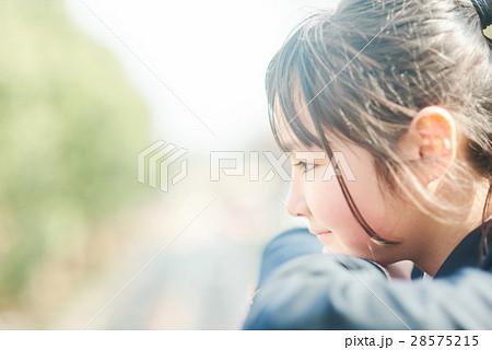 高校生と桜 28575215