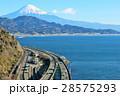 静岡県 薩埵峠からの風景 28575293