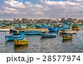アレキサンドリア アレクサンドリア 海の写真 28577974