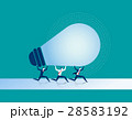 電球 球根 球のイラスト 28583192