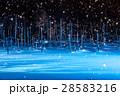 美瑛 青い池 ライトアップ 28583216