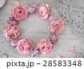 リース ローズ 薔薇の写真 28583348