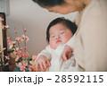 赤ちゃん 孫 初節句の写真 28592115