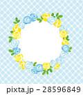 チェック 花 薔薇のイラスト 28596849