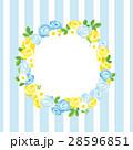 ストライプ 花 薔薇のイラスト 28596851