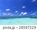 オーストラリアグリーン島 28597229